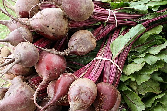 Beet Greens Taste Great and Are Good For You