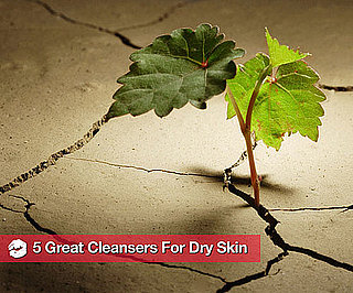 Best Cleansers For Dry Skin