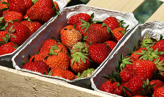 Strawberry Prices Expected to Drop Dramatically