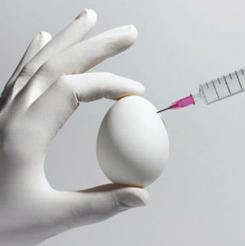 Fertility Treatments and Autism