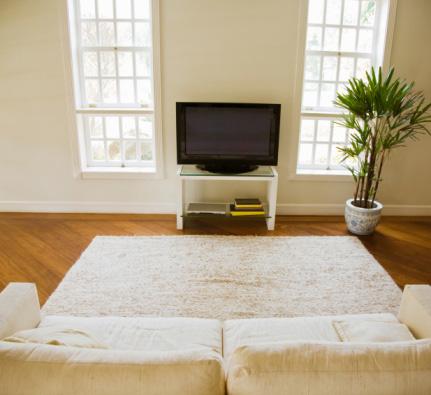 Do You Enjoy TV or Internet Breaks?