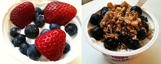 Healthy Greek Yogurt Toppings and Recipes