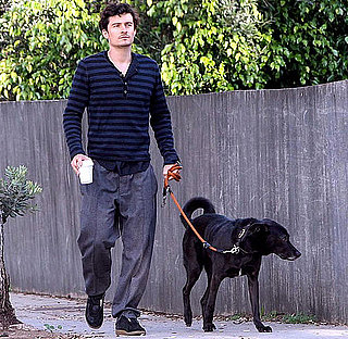 Pictures of Dad-to-Be Orlando Bloom Getting Coffee in LA With Dog Sidi