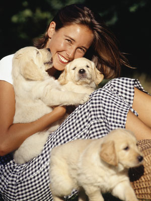Do You Follow a Breeder, Vet or Daycare on Facebook?