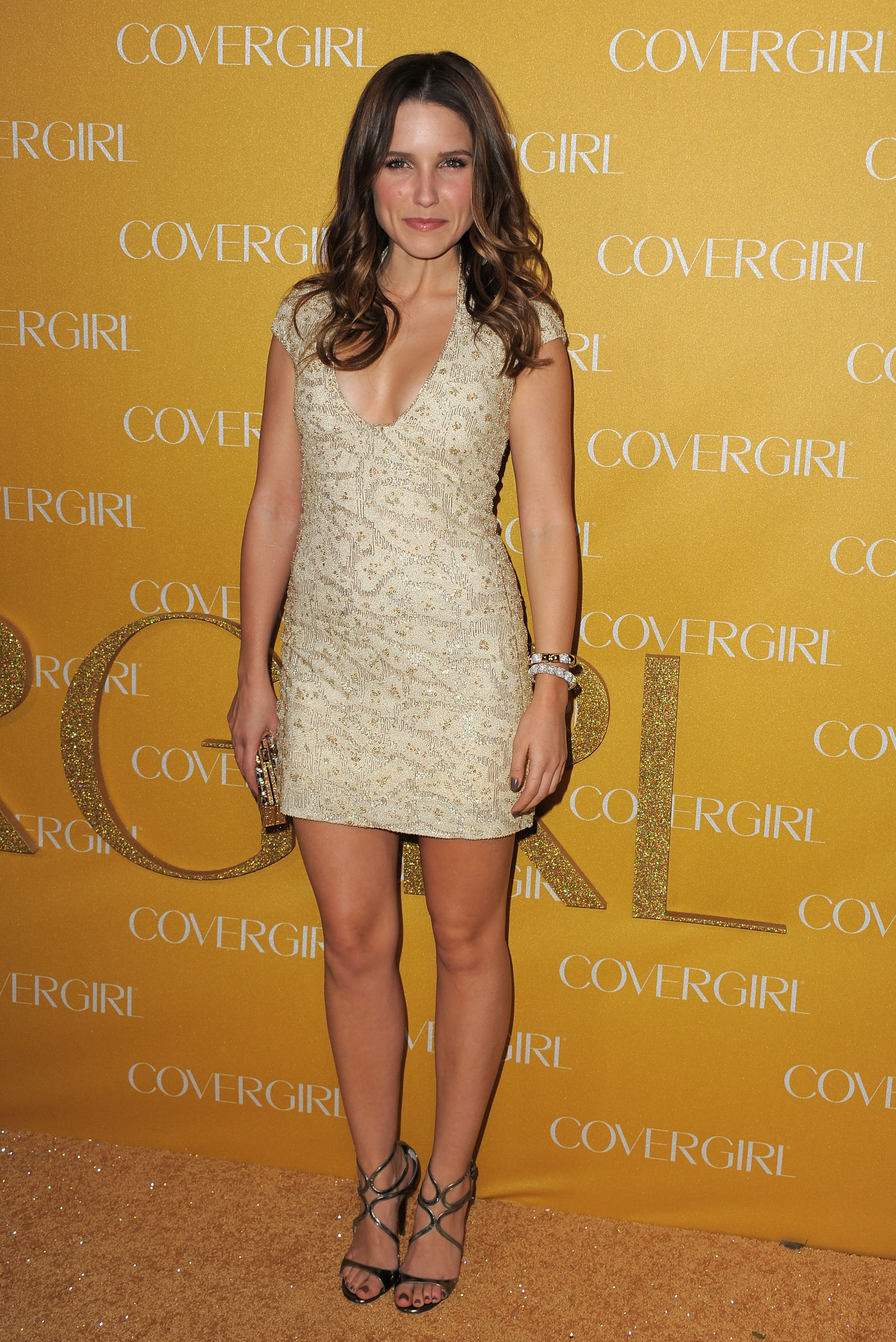 Sophia Bush dress