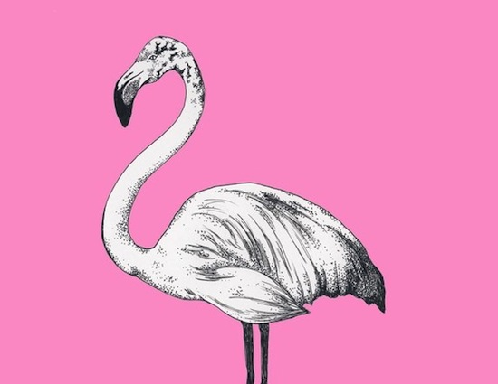Birds have been flitting around the home decorating scene for years now, so how about an unlikely avian variety, such as a pink flamingo, for 2011? To add one to your home, try this Flamingo Print ($20).