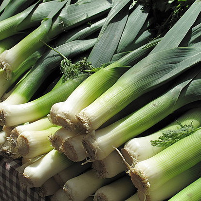 How to Buy and Cook With Leeks