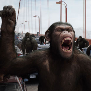 Rise of the Planet of the Apes Takes First Place at the Box Office