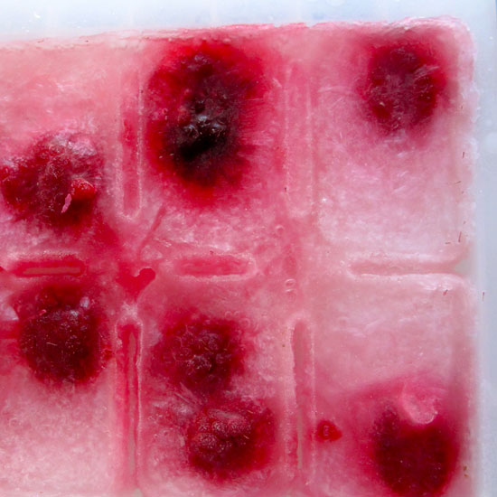 How to Make Ice Cubes For Punch