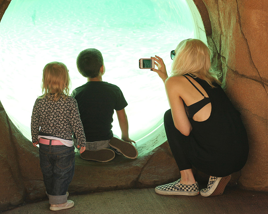 Gwen Stefani taking pictures of Kingston at the zoo in London.