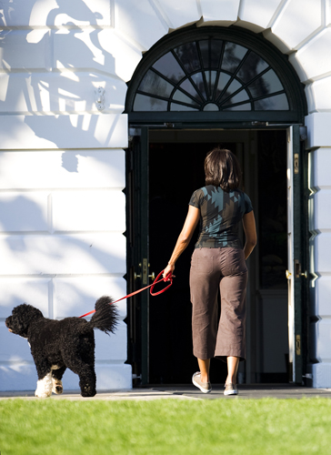 The First Lady and First Dog Hang Outside