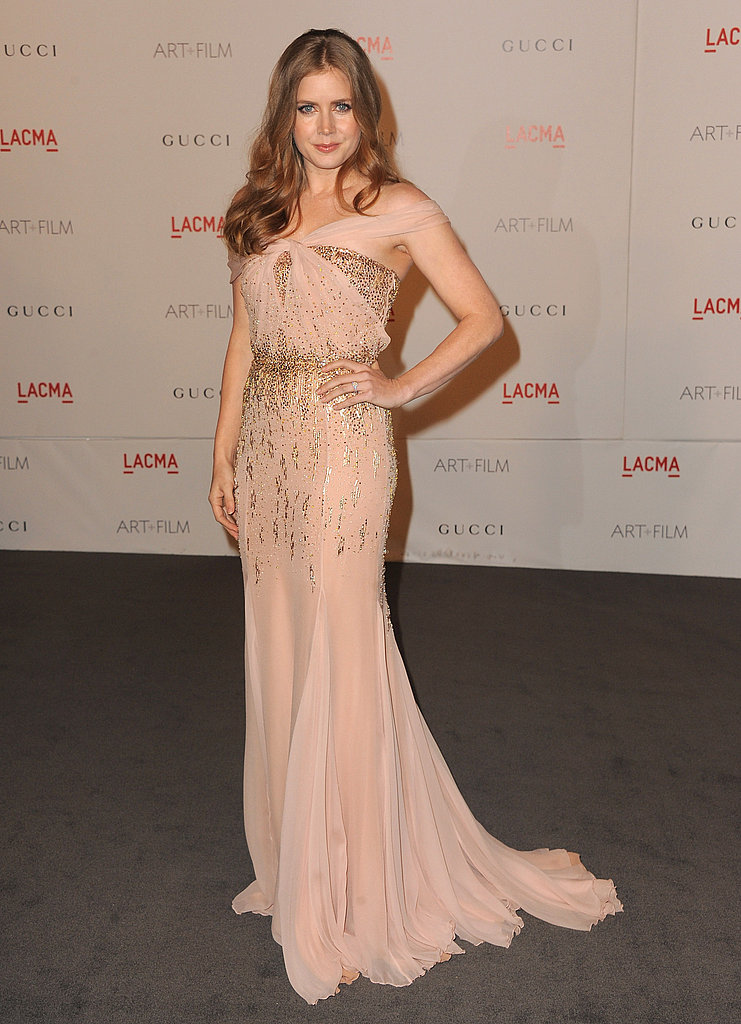 Amy Adams in a sheer dress.
