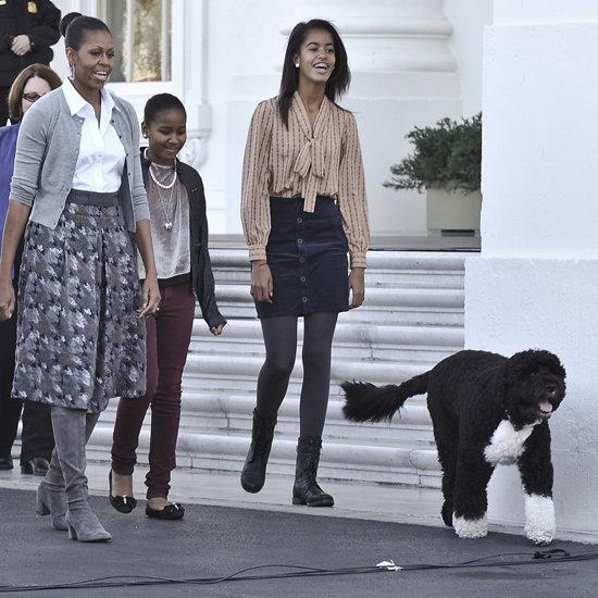 Bo Obama With White House Christmas Tree