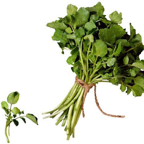 10 Foods That Help Detoxify the Body