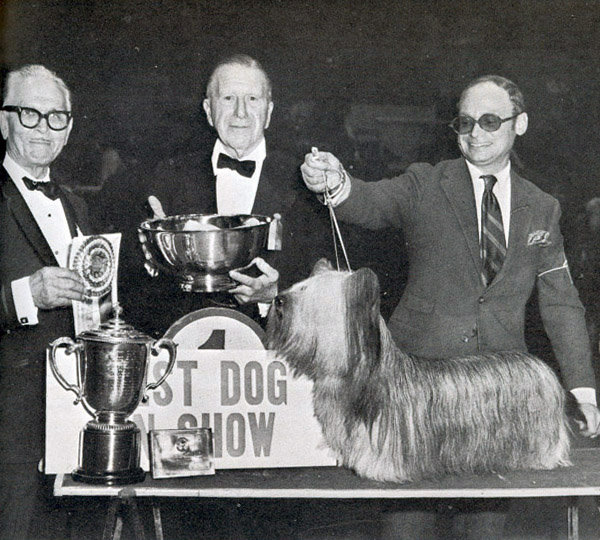 Ch Glamoor Good News, a Skye terrier, won in 1969. Source: American Kennel Club Archives