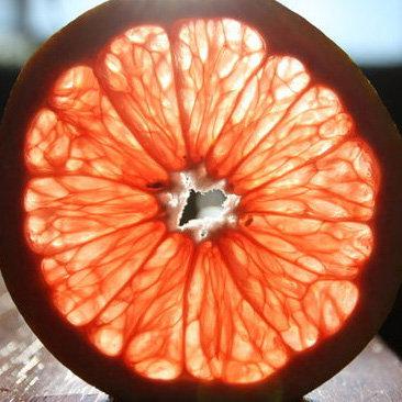 National Grapefruit Month Recipes
