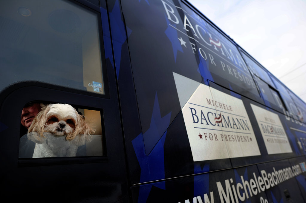 This pup hits the campaign trail with former candidate Michele Bachmann in December.