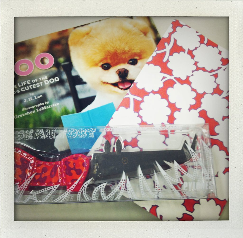 Publisher Marisa got some great loot for her birthday, including an amazing DvF notebook and quirky cheese knife!