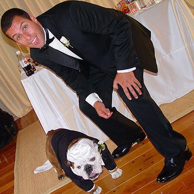 Adam Sandler's Canine Attendant