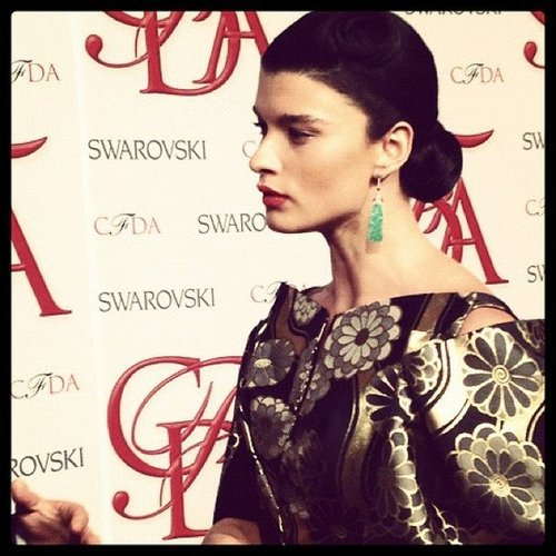 We spotted the stunning Crystal Renn on the CFDA red carpet this May.
