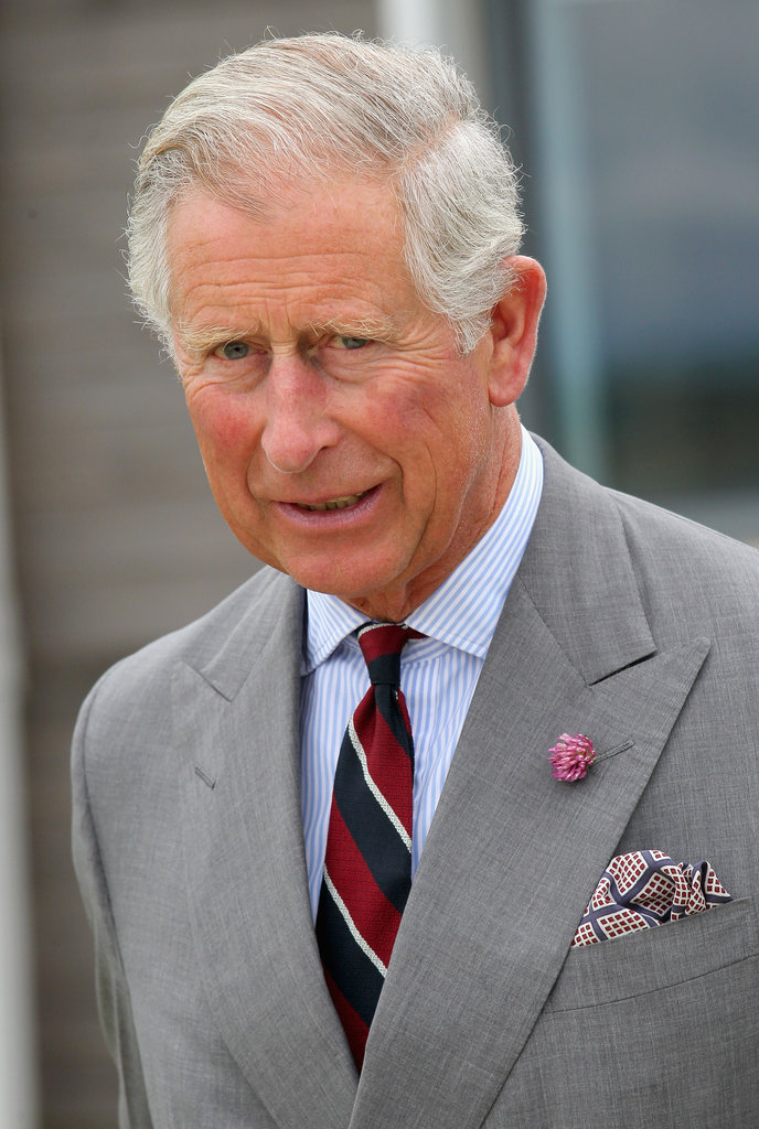 Prince Charles was dressed in a suit as he toured the base with his son.