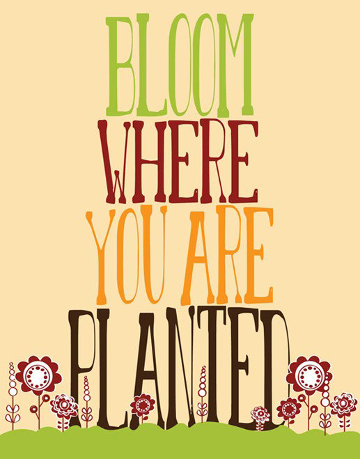 I'm loving the tall letters and cute flowers on this Bloom Where You Are Planted Print (approx $21).