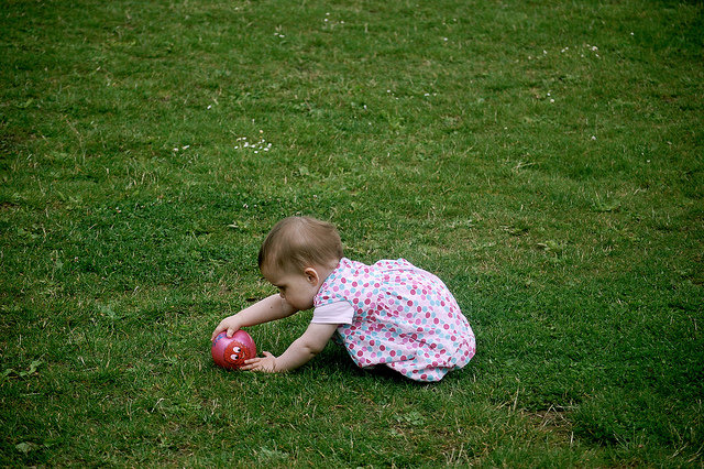Play With a Ball