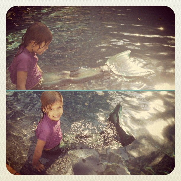 Jessica Alba snapped a photo of Honor Warren wearing a mermaid tail. Source: Instagram user jessicaalba