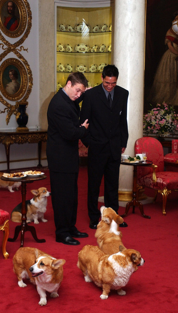 A couple of New Zealand rugby footballers chatted it up with the queen's Corgis during afternoon tea at Buckingham Palace in 2002.