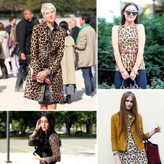 Leopard Print Street Style | Style Tips