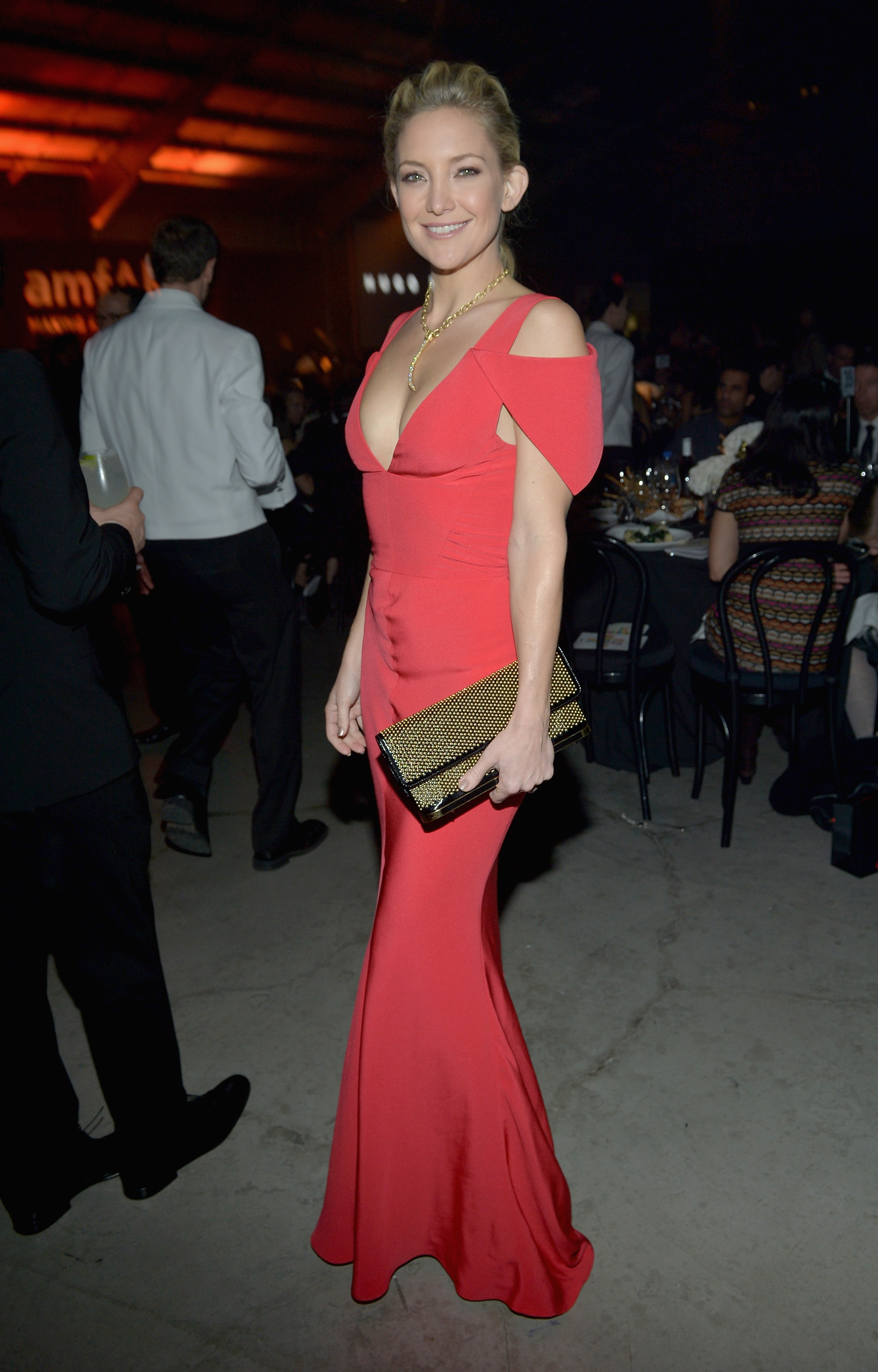 Kate Hudson stepped out in a red gown for the amfAR Gala in LA.