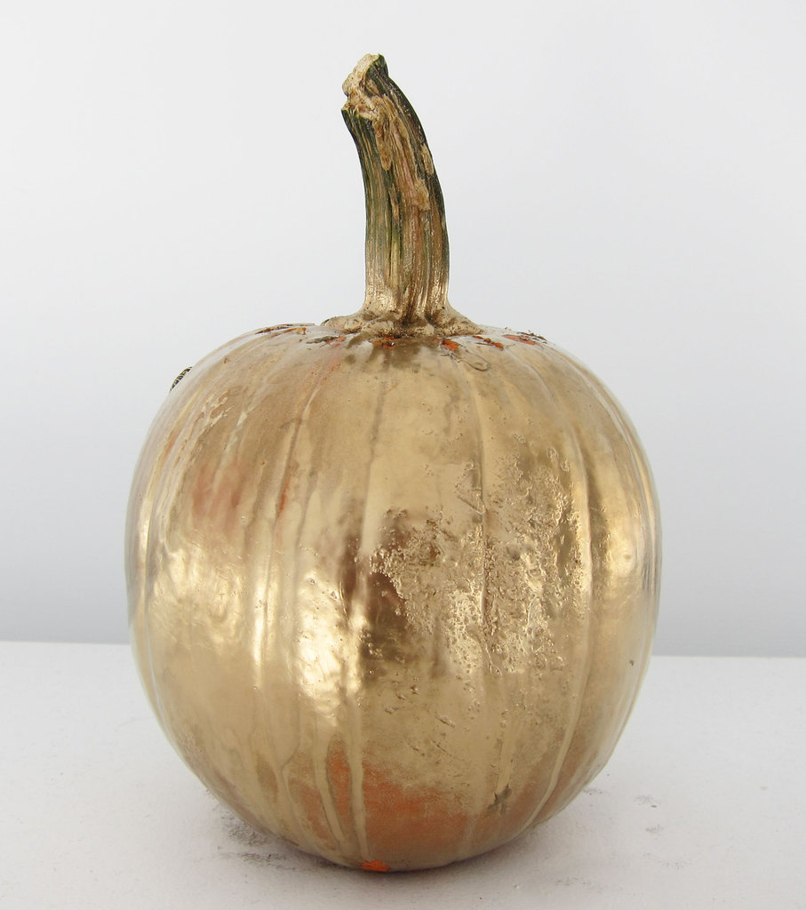 Directions: Spray a heavy coat of metallic paint on your pumpkin in an open, ventilated area and allow to dry (around 20 minutes).