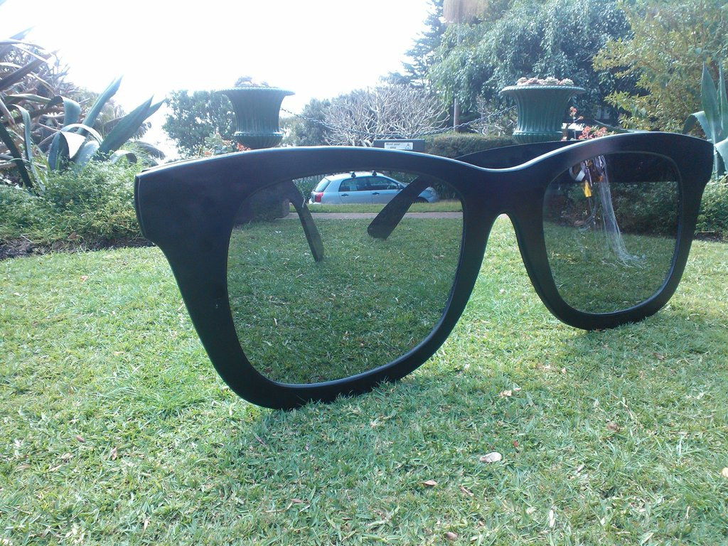 Oops, left my sunnies on the lawn again...