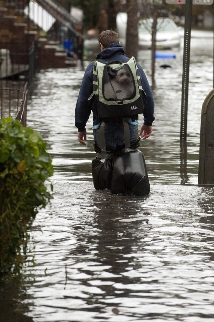 A man in Hoboken, NJ, walked through the aftermath of Sandy with his dog strapped safely to his back.