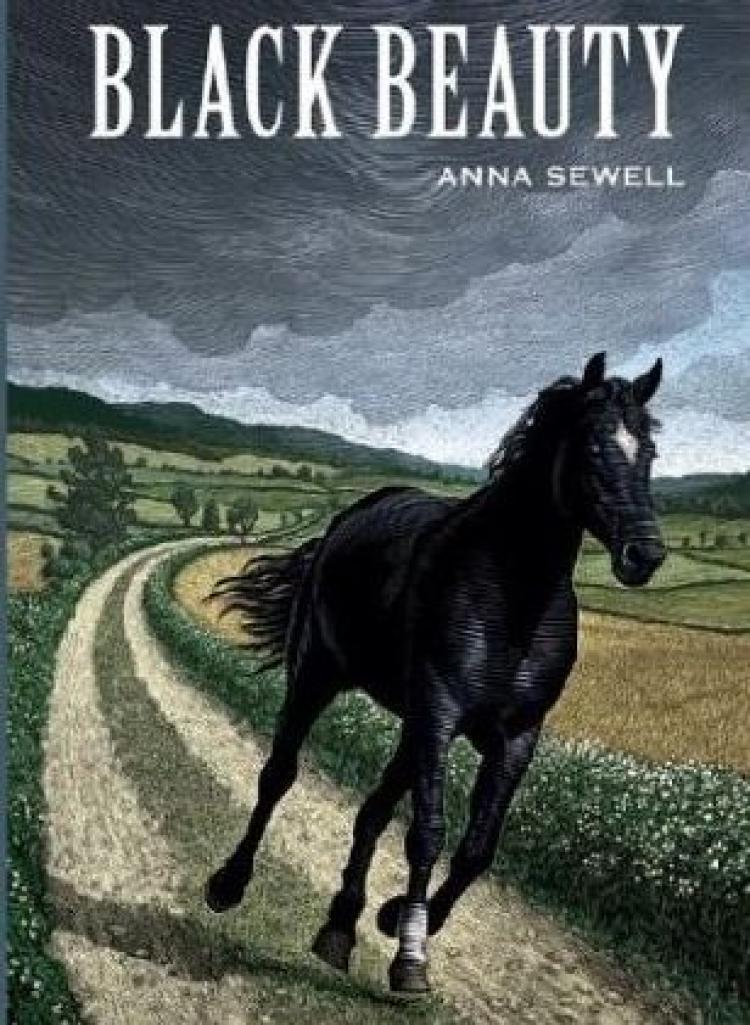 Book report on black beauty by anna sewell
