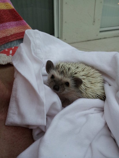 Snuggle Hayley