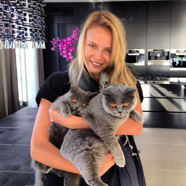 Natasha Poly cuddled with cats. Source: Instagram user natashapoly