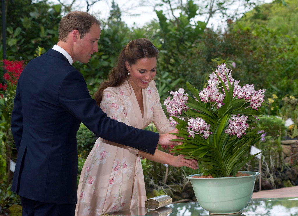 In September, Prince William and Kate checked out the Vanda William Catherine orchid during their visit to the Singapore Botanical Gardens.
