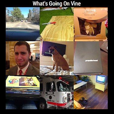 Ways to View Vine