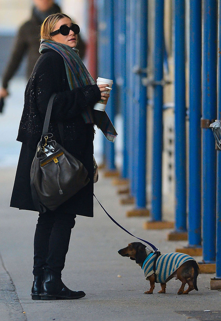 Ashley Olsen walked her dog in NYC.