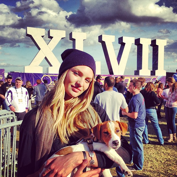 Candice Swanepoel brought a dog to the Super Bowl. Source: Instagram user angelcandices