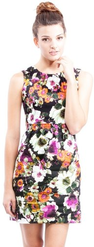 Elsa Bee Sleeveless Floral Pleated Dress