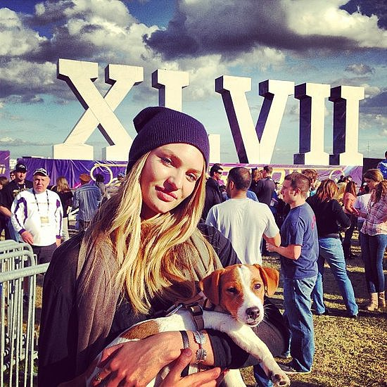 February Celebrities and Their Furry Friends