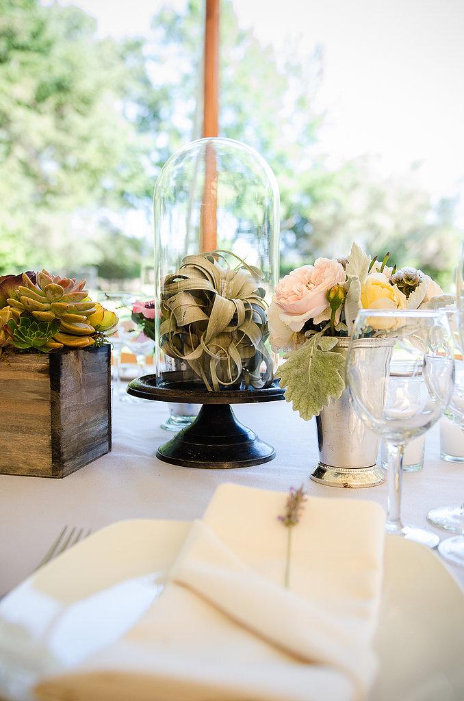 Tillandsia air plants, a favorite of the bride, were a unique touch to the tablescape.  Source: Juliette Tinnus
