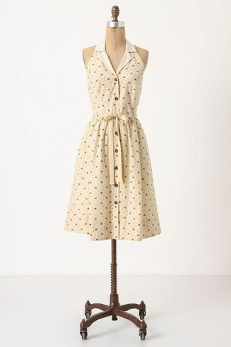 Honeyed Life Shirtdress