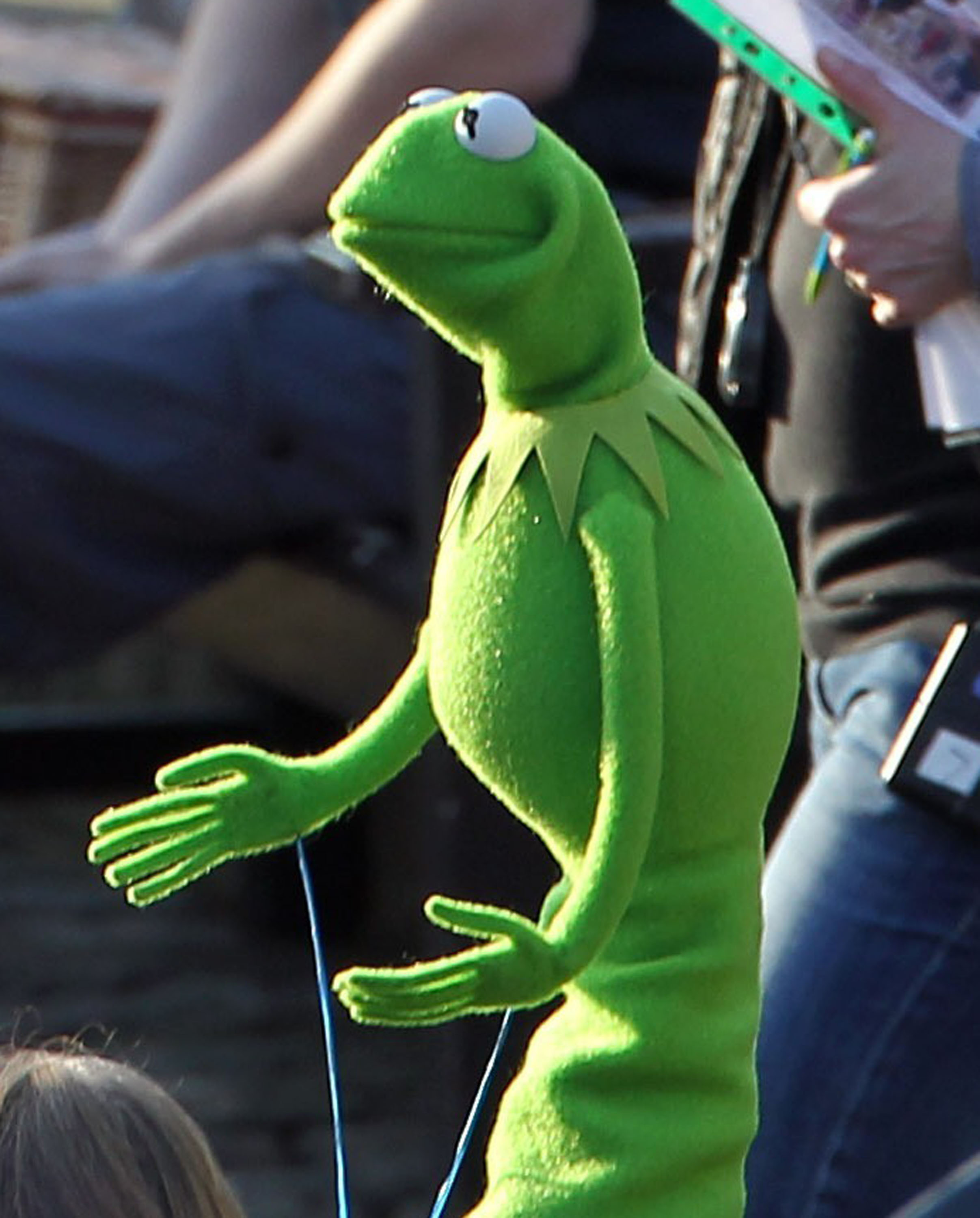 Kermit the frog traveled to london to film the muppets for Frog london