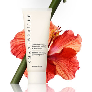 Review of Chantecaille Bamboo and Hibiscus Exfoliating Cream