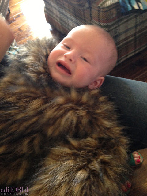 Finn not loving that no one knows if he's dressed as a DIY ewok or baby Chewie. The furry headpiece not featured in the photo sent him over the edge. Sorry, Finn!