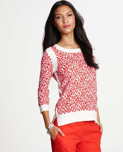 Leopard Print Cotton Blend 3/4 Sleeve Sweater