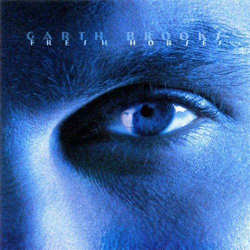 """To Make You Feel My Love"" by Garth Brooks"